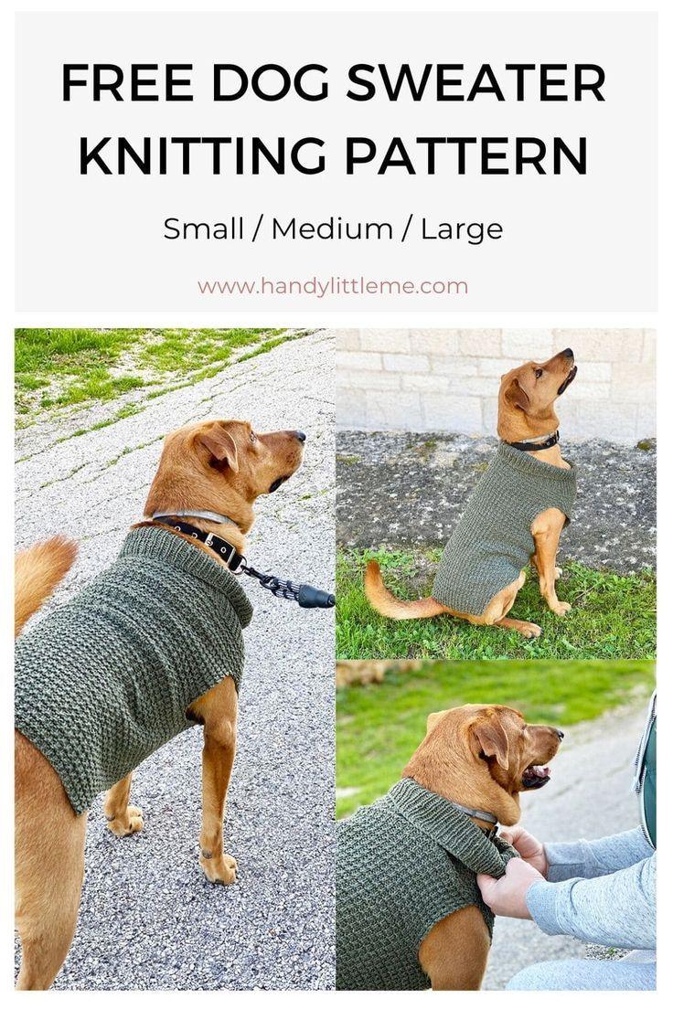 Dog Sweater Knitting Pattern {Straight Needles} in 2020