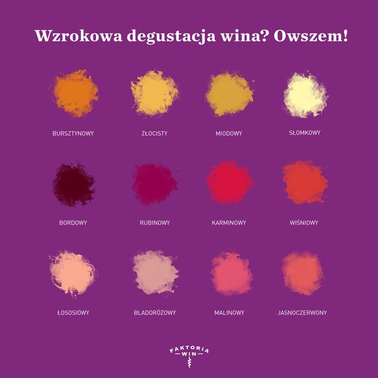 Wzrokowa degustacja wina.
