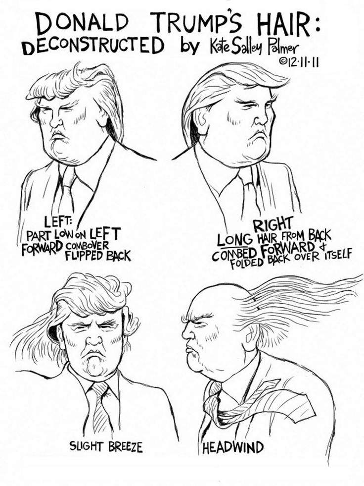 Trump Hair Diagram How To Laugh For Dummies Pinterest
