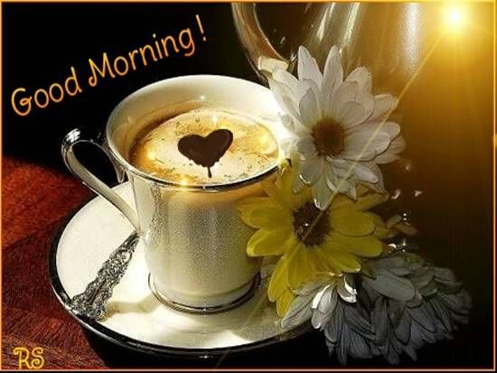 A New Morning, A New Day! Free Good Morning eCards, Greeting Cards | 123 Greetings