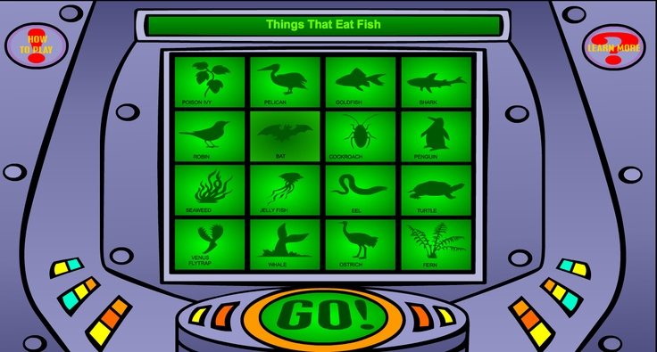 C1 W16 SCIENCE Classification Game http