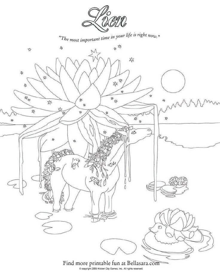 385 Best Images About Adult Coloring Pages Horses On