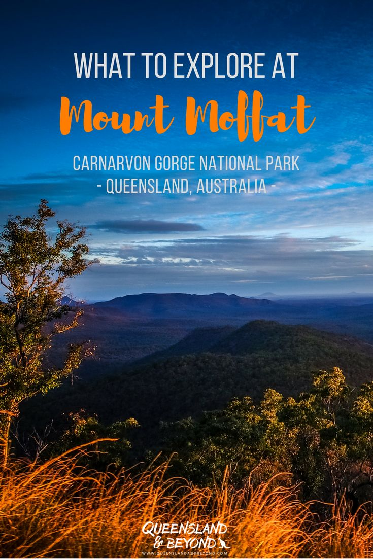 Queensland has so much more to offer than just the beach. Mount Moffat is part of stunning Carnarvon Gorge National Park in the Queensland Outback and so worth a trip. Ideas and inspiration for a 4WD road trip, camping and walks here. This is 'remote Australia'. 🌐 Queensland & Beyond. #carnarvongorge #nationalpark #mountmoffat #4WD #queensland #australia #outback