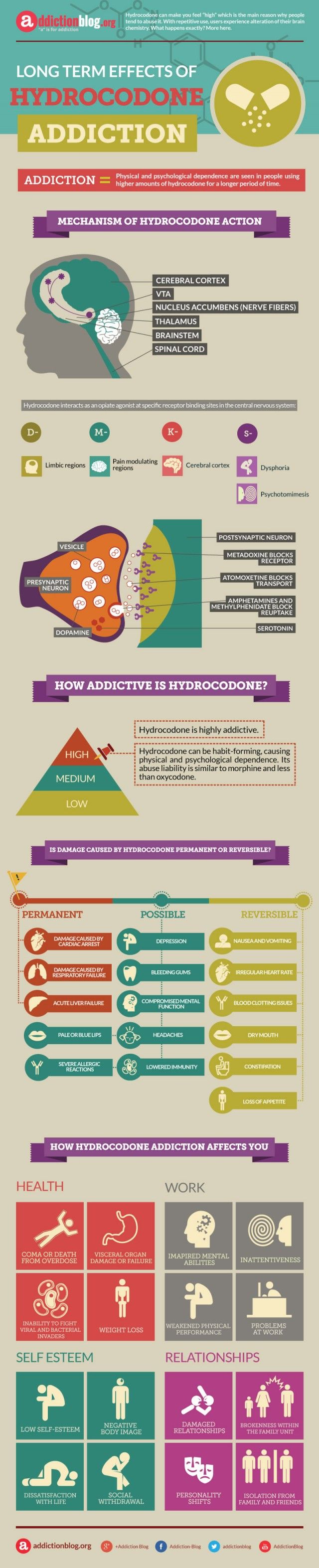 Long term effects of Hydrocodone addiction (INFOGRAPHIC) | Addiction Blog