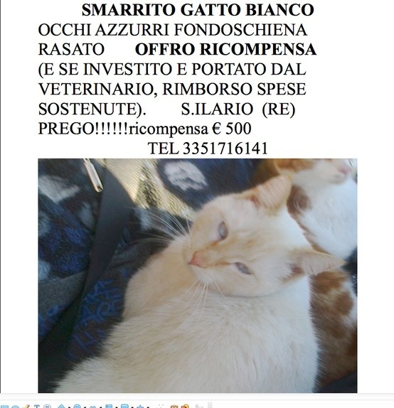 HELP !!!! Italy - Reggio Emilia - S. Ilario D'Enza Please share it!
