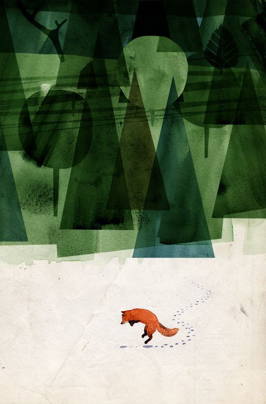 The fox and the forest by Mattias Käll