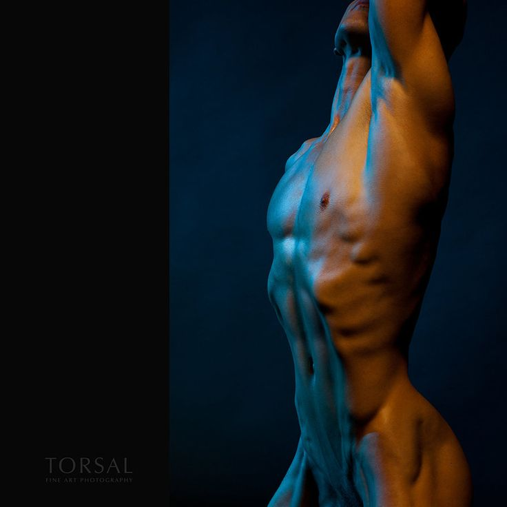 Photographer: Peter Torsal; Genre: nude; Titel: CHROMATIC NUDE; Tags: Torsal beautiful model athletic man handsome boy nude muscles male sexy erotic body skinny young men ripped hot male model chest muscular hunk guy abs 6pack sixpack fit attractive cute