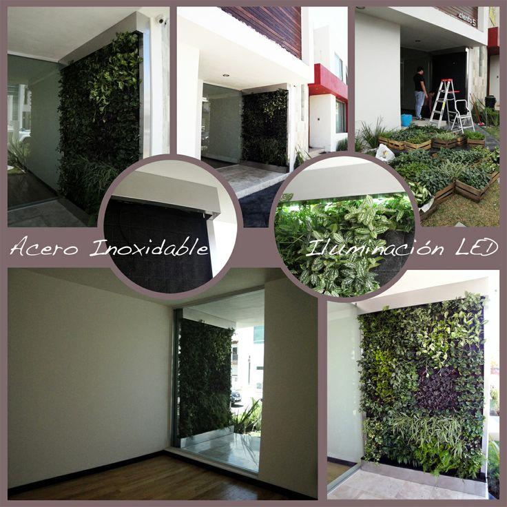 Paso por paso confeccionamos nuestros muros verdes - Jardines verticales paso a paso ...