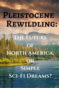 rewilding north america essay Roughly twelve thousand years ago, several elephant relatives roamed north  america, and the last known mammoth perished on an island off siberia less  than.