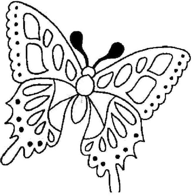 44 best farfalle disegni images on Pinterest Butterflies - butterfly template