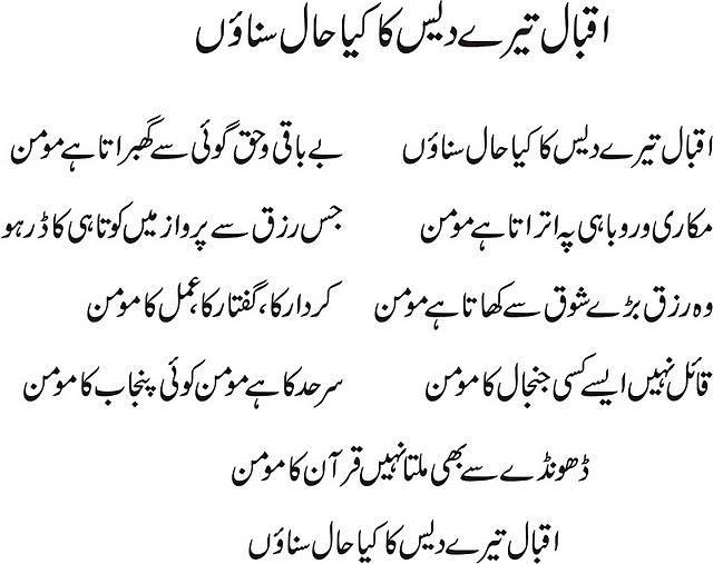 Betting Against The Grain Meaning In Urdu - image 9