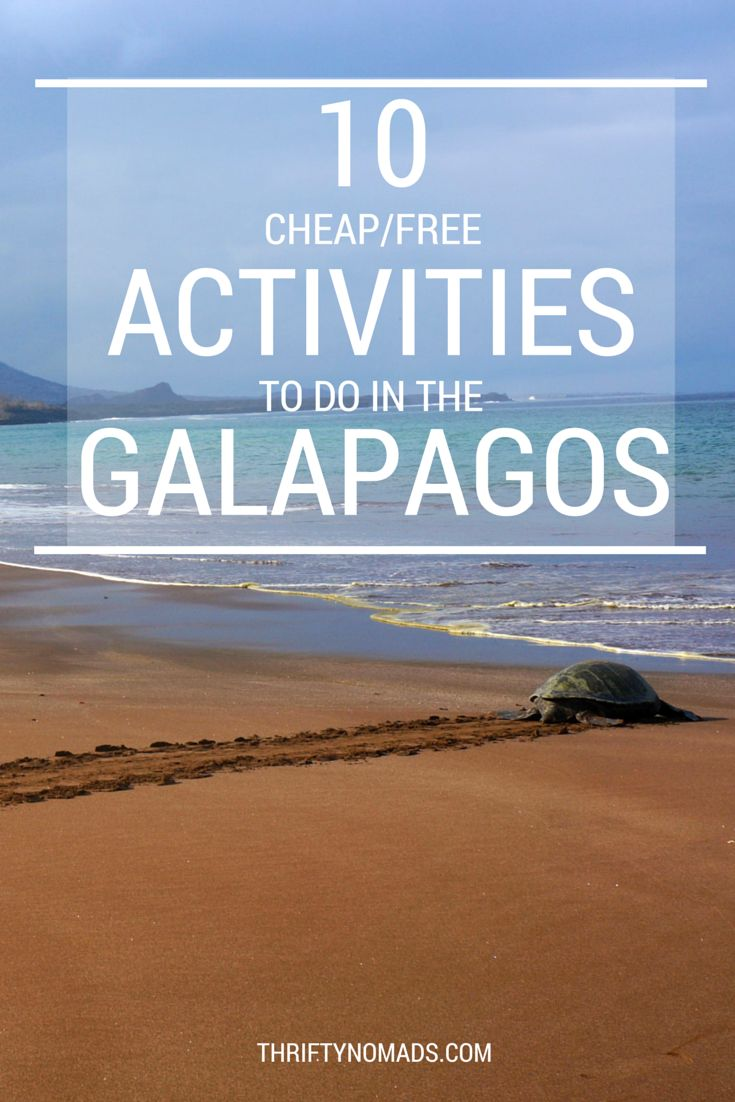 From kayaking and snorkelling to 100% free places to spot wildlife - an easy list & no tours needed!