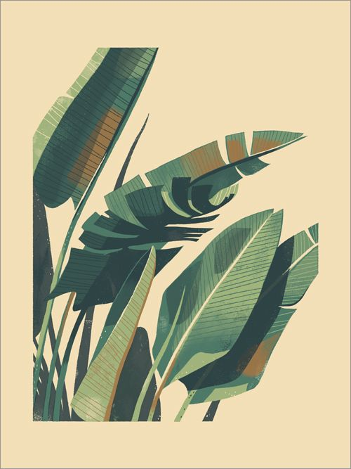 1294 best images about ins art x illustration on for Plante 42 chris