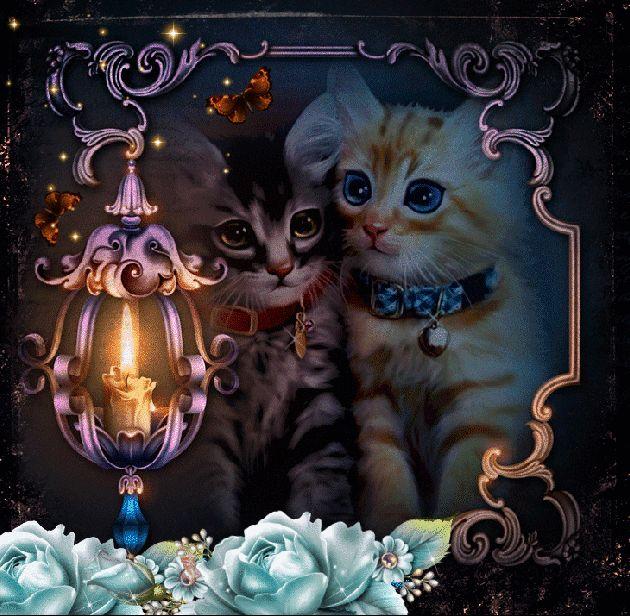 Анимашки доброго вечера и спокойной ночи, открытки