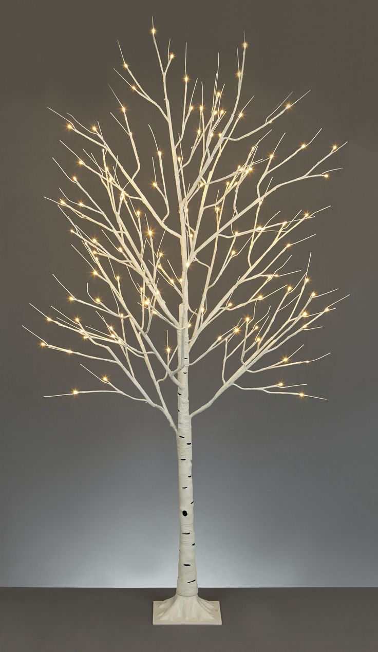 Linea 1.2 M Birch Tree