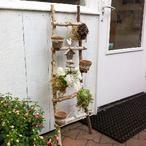 Houten trap om zelf te decoreren, ook leuk voor in huis. Houten ladder en decoratiemateriaal verkrijgbaar op webshop decoratietakken Knoops