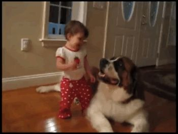 This dog helping a baby achieve her dream. | 49 Of The