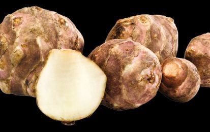 Topinambur: le proprietà benefiche - Il topinambur è una pianta dalle innumerevoli proprietà benefiche. Particolarmente versatile in cucina, apporta vitamine, sali minerali, aminoacidi e fibre.