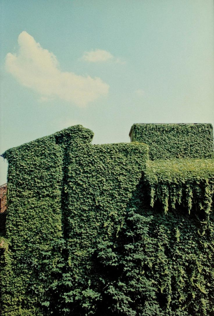 ferrara, 1981• luigi ghirri • for @Zoe James James James James Lee