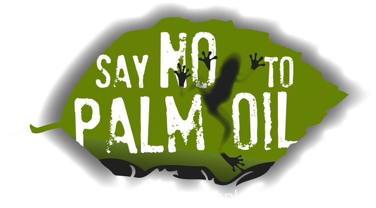Say NO To Palm Oil | Save Endangered Species | Stop Deforestation | *Click* the link for the website, and see what you can do to help.