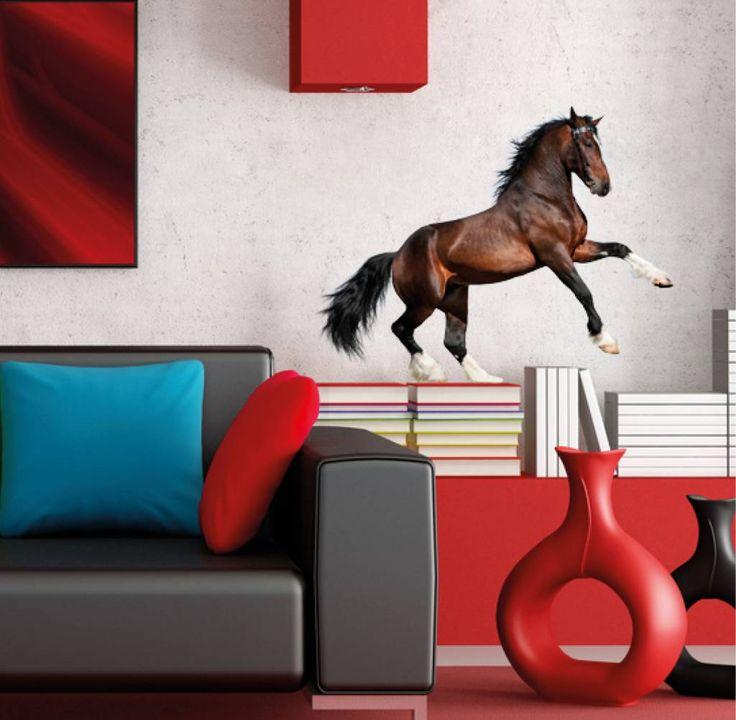 Muursticker Vinyl van een prachtig bruin Paard, een aanwinst in de kamer van een echte Amozone!
