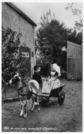 Met de geitenkar