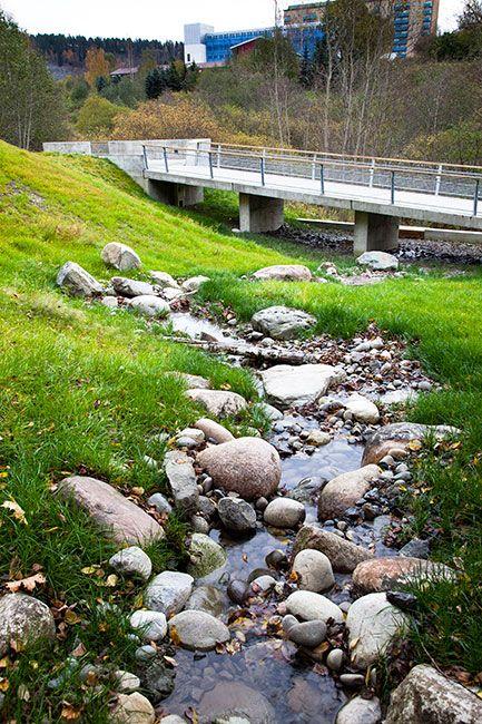 landscape design-stormwater