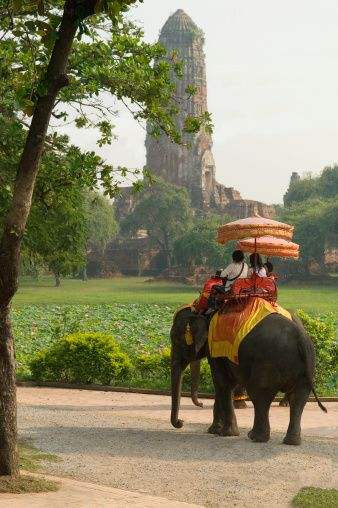 elephant ride in Ayutthaya, Thailand