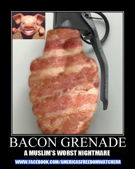 fun baby photo shoot ideas - Bacon Grenade bacon Bacon BACON Pinterest