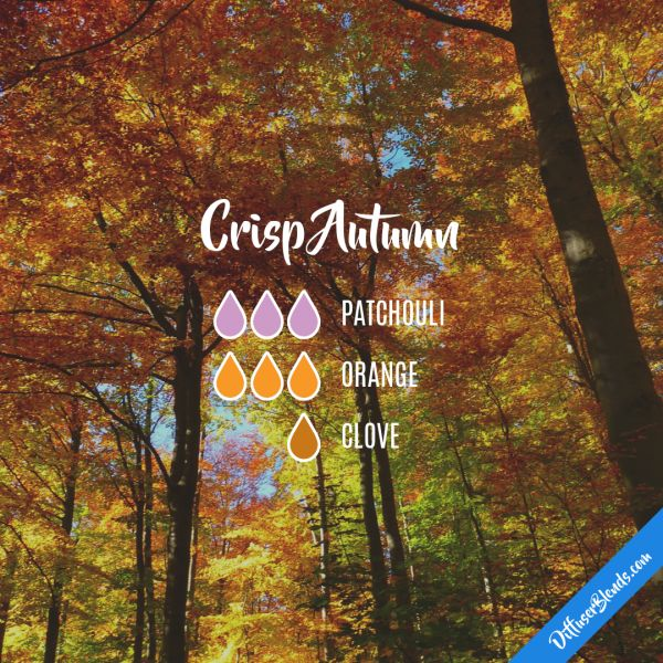 Crisp Autumn - Essential Oil Diffuser Blend