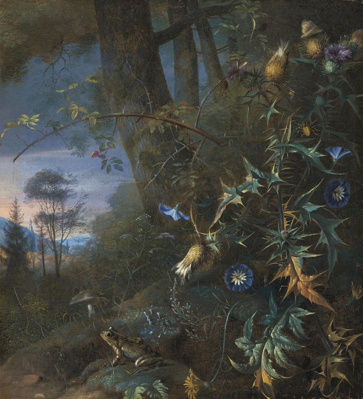 Matthias Withoos (1627-1703) A Forest Floor Still Life with a Frog and Mushroom, Mountains Beyond