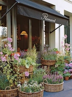 Flamant Flower Shop in Paris                                                                                                                                                                                 More