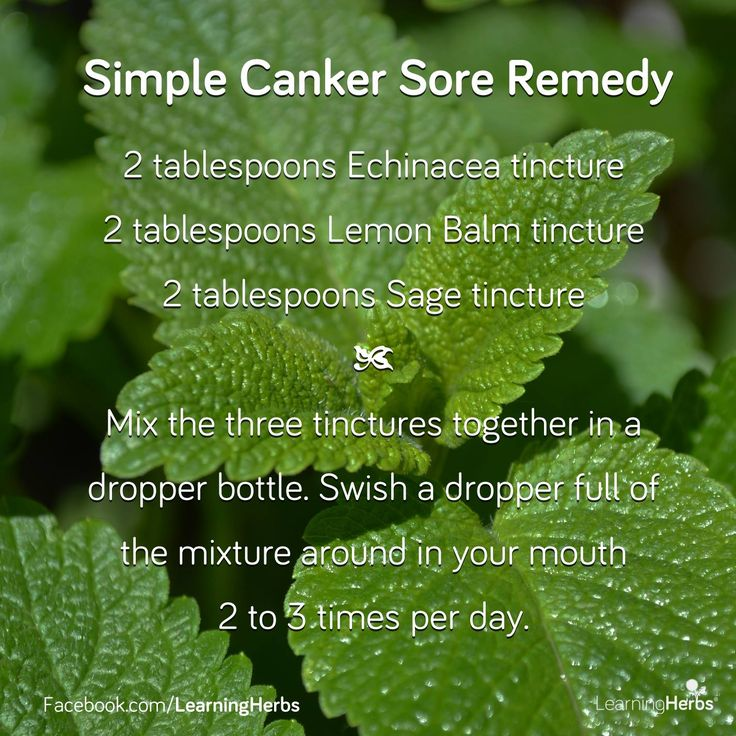 17 Best ideas about Canker Sores on Pinterest