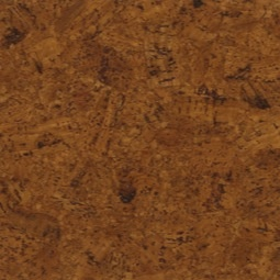 8 best Cork Flooring images on Pinterest
