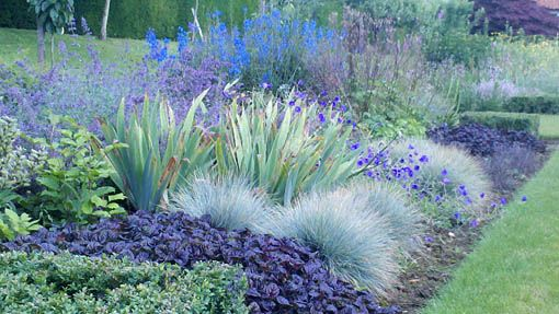 great foliage combinations#cool# blue#border
