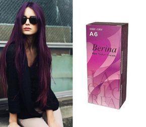 Berina No. A6 Color Hair Cream Purple Color Super Permanent Hair Dye Punk