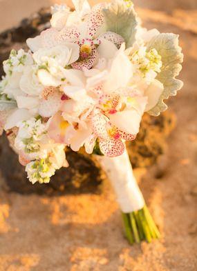 atrium flowers maui