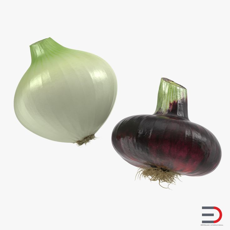 Onion Collection 3D