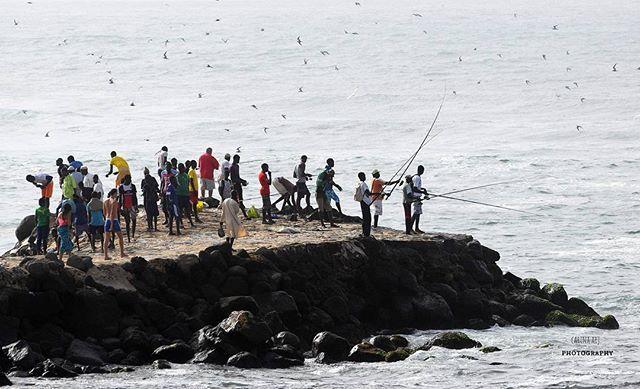 Fishing party in Dakar #senegal