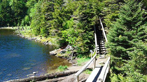 Mois de juin au lac Spruce Crédit photo : M.-C. Grégoire