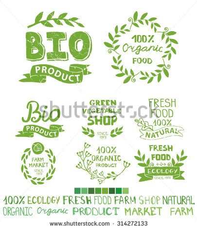 Organic,bio,ecology natural shop logotypes set.Green logo,grunge Badges,,ribbons,plants elements and laurels wreaths,letters and text.Hand drawing painting design template.Vintage vector