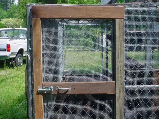 Ideas about dog kennel and run on pinterest dog kennels cat kennel
