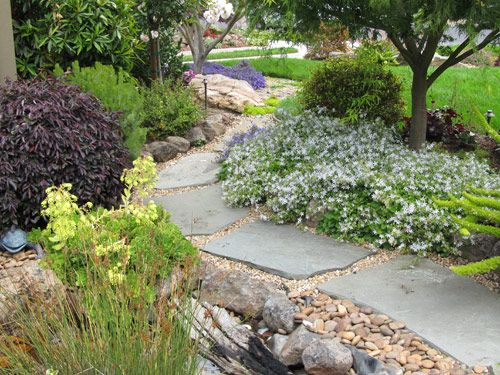 California native landscape design cal native before for California native landscape design
