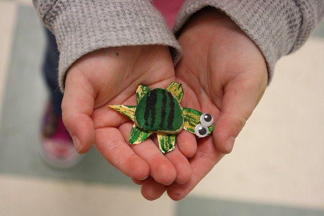 turtles • t week - 4