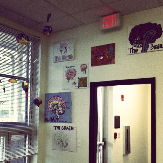 Classroom Design Psychology ~ Best images about teaching on pinterest ryan gosling