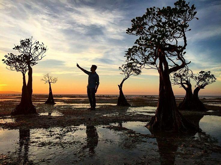 View tercantik di pantai ini adalah saat matahari tenggelam dan air laut sedang surut.  Mau menikmati sunset indah seperti ini?? Yukk ikutan Trip Amazing Sumba.  Tanggal 31 Agustus – 4 September IDR 2,475,000/pax  Start : Tambolaka Finish : Waingapu  Detail trip Sumba bisa lihat disini >> http://bit.ly/OpenTripPulauSumba . . For details/reservation /private trip arrangement please mail to  tuk4ng.jalan@gmail.com . . WA : 087808116852 / 085810697553 Line :@tukangjalan Ig :@tukang_jalan…