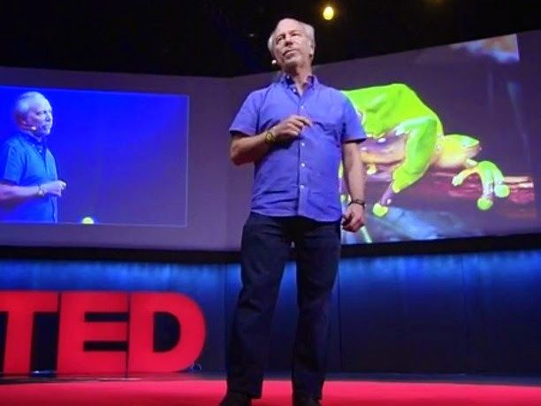 eniaftos: What the people of the Amazon know that you don't (TED)