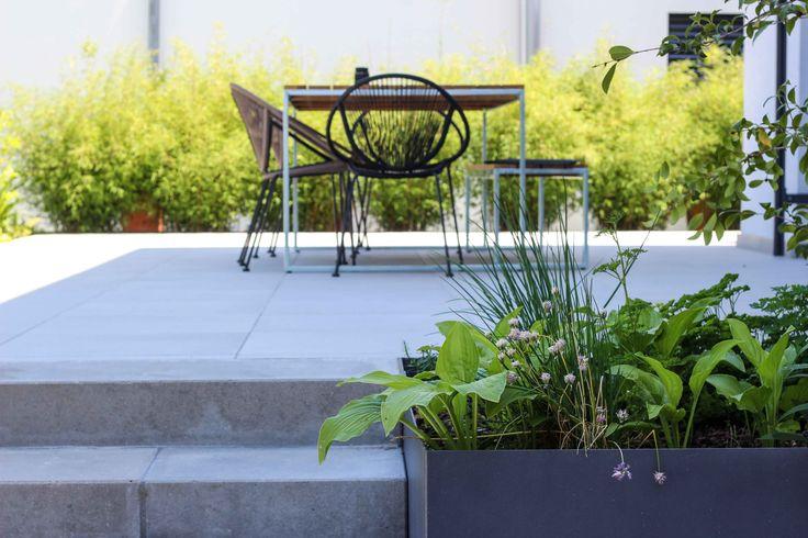 Puristische Gartengestaltung 23 besten plan germann bilder auf