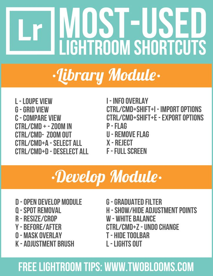 FREE Lightroom shortcuts printable guide | Two Blooms Lightroom Presets for Portraits                                                                                                                                                      More