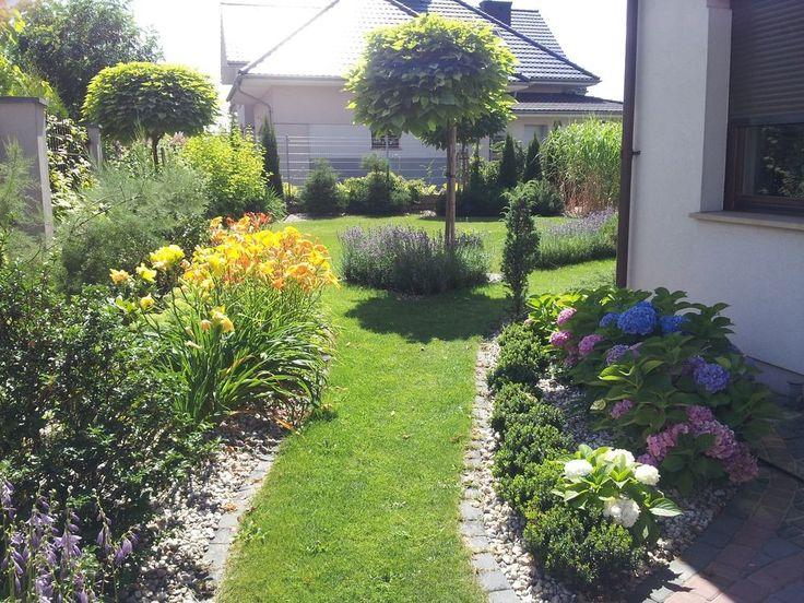 #Ogród w cieniu #Katalpy  #Garden In a #Catalpa Shade
